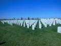 米軍関係者の墓地