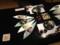夕飯その2: 刺身(2)