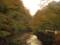 佛通寺前の川と紅葉 #tamayura