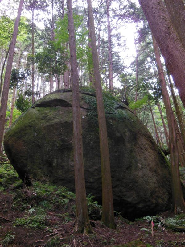 七沢の亀石。でかいね #げんつき
