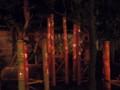 松阪邸の紅葉っぽい竹灯り
