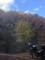 SEROWと秋の山