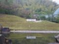 三春滝桜の小桜