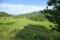 棚田の風景(1)