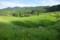 棚田の風景(2)