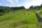 棚田の風景(3)