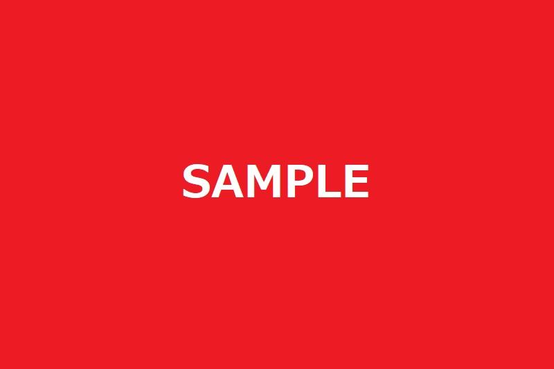 f:id:Vulpes-ferrilata:20210422013953j:plain