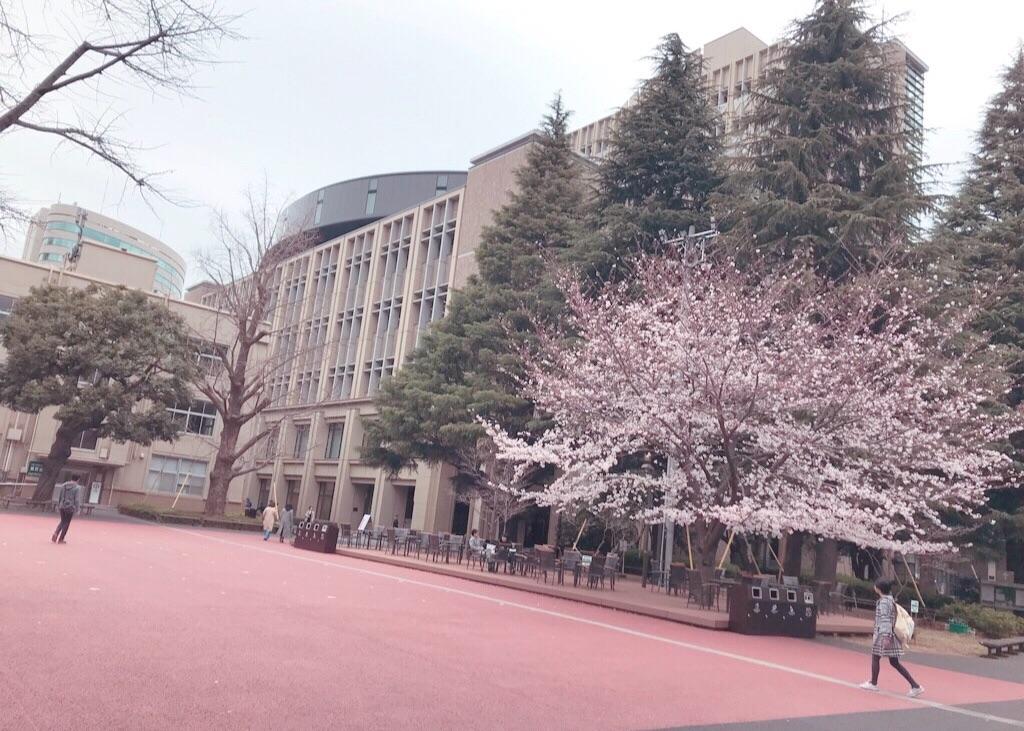 f:id:Waseda_juken:20200213134400j:plain