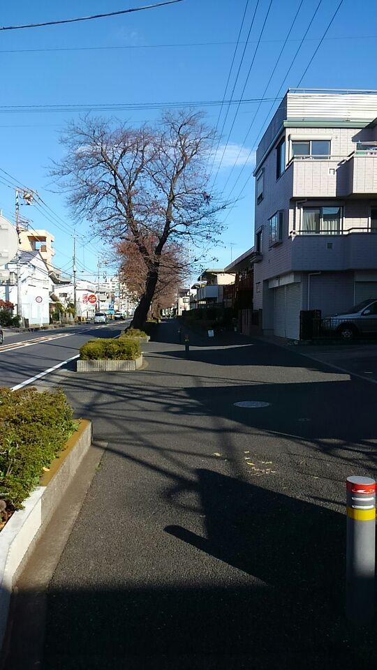 f:id:WatanabeNobuaki:20171126121248j:plain