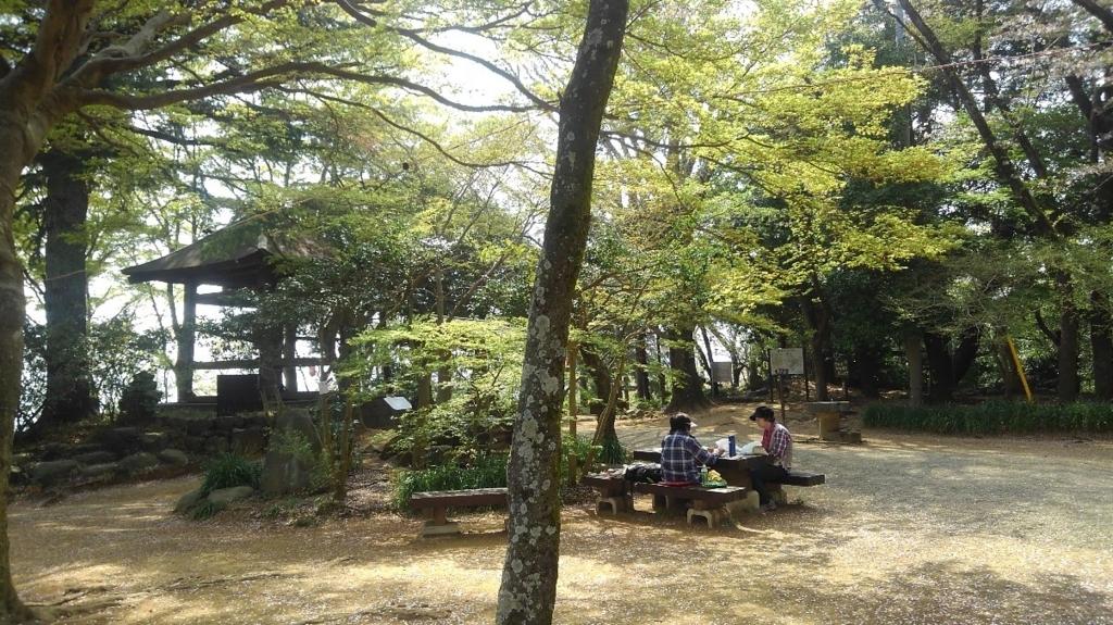 f:id:WatanabeNobuaki:20180403224459j:plain