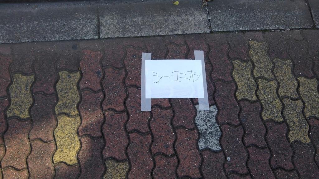 f:id:WatanabeNobuaki:20181117162334j:plain