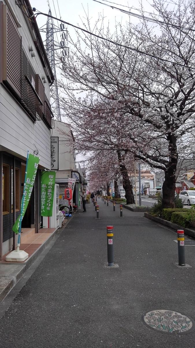 f:id:WatanabeNobuaki:20190401221638j:plain