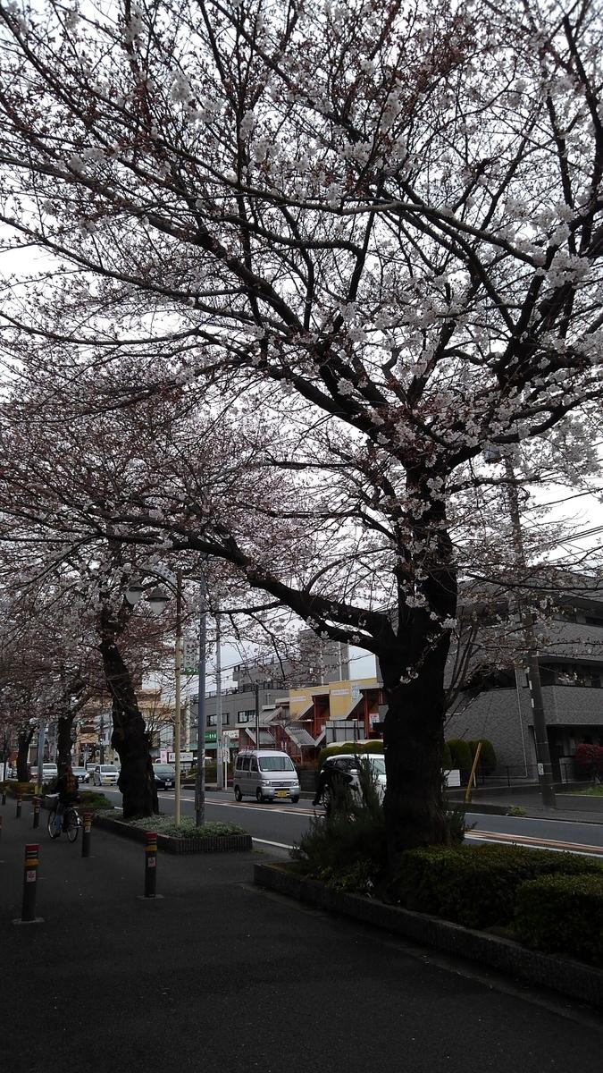 f:id:WatanabeNobuaki:20190401221942j:plain