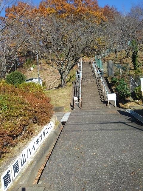 f:id:WatanabeNobuaki:20191219133335j:plain