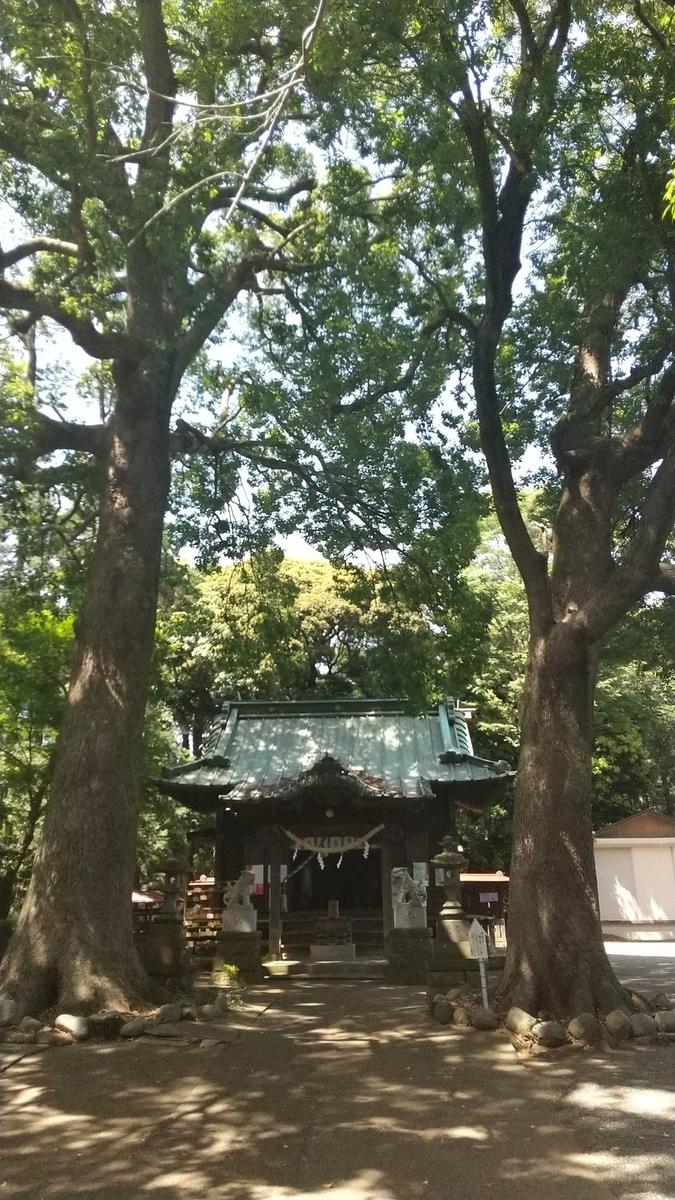 f:id:WatanabeNobuaki:20200525124111j:plain