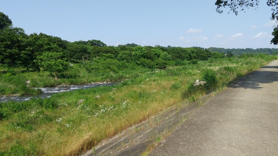 f:id:WatanabeNobuaki:20200609012411j:plain