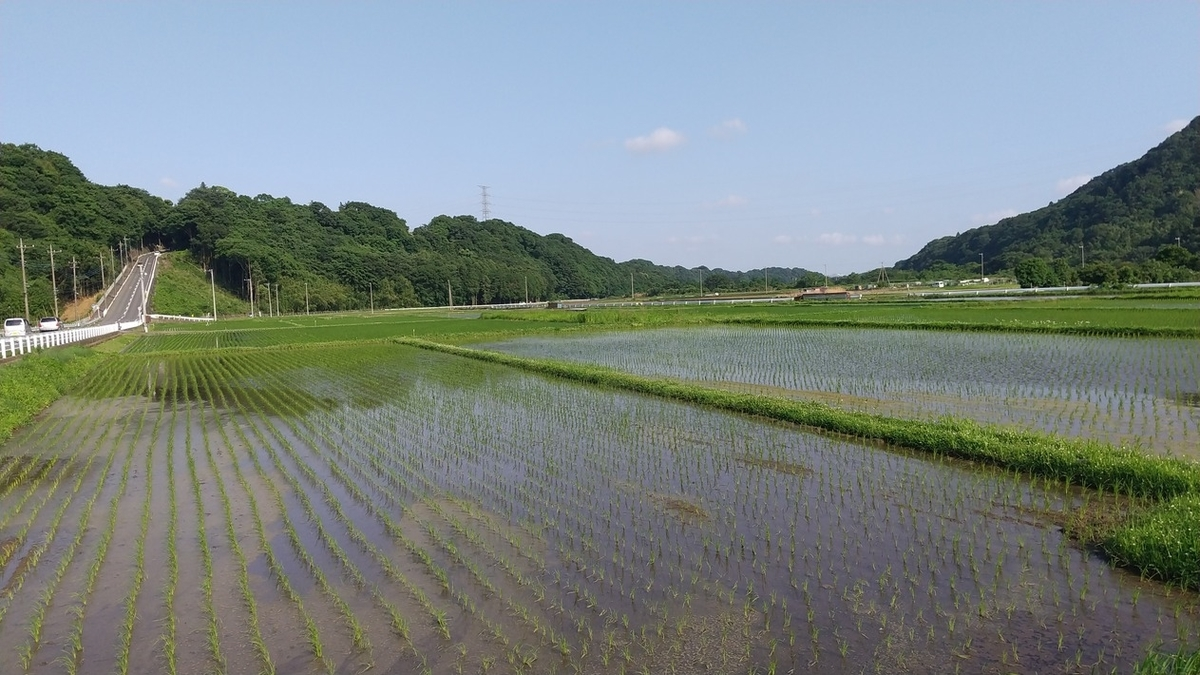 f:id:WatanabeNobuaki:20200609012928j:plain