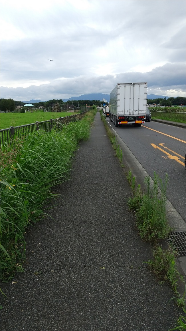 f:id:WatanabeNobuaki:20200727155431j:plain