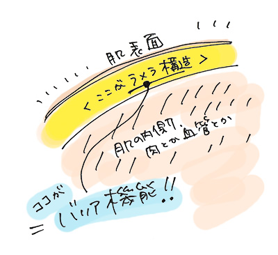 f:id:WebYuzuriha:20170406141045j:plain