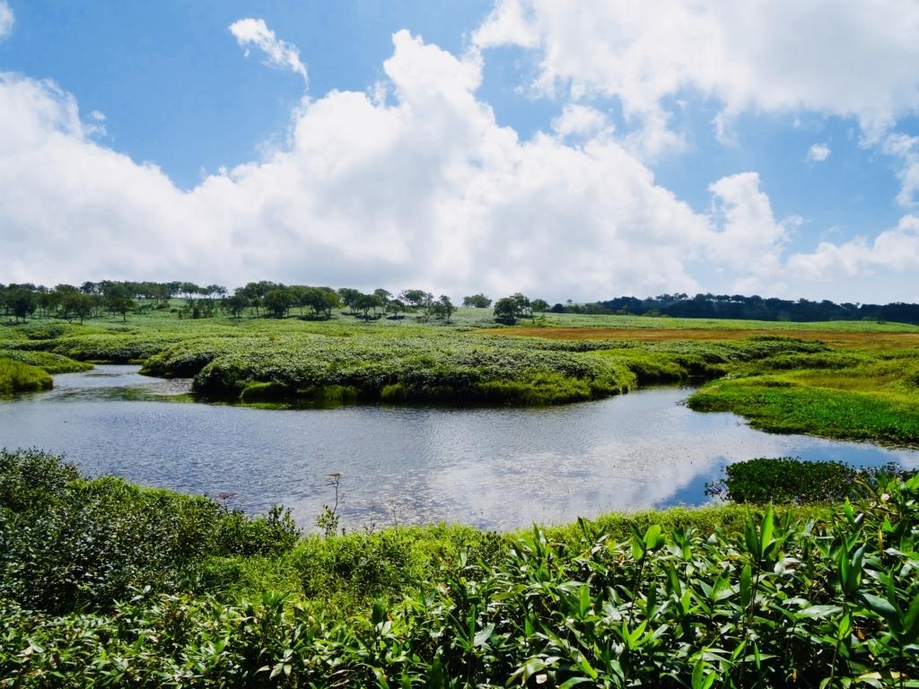 f:id:Wetland:20180822221737j:plain