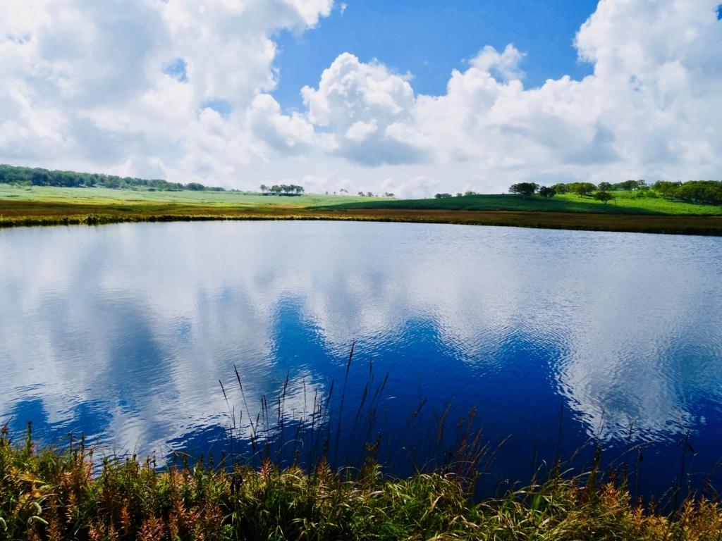 f:id:Wetland:20180822221746j:plain