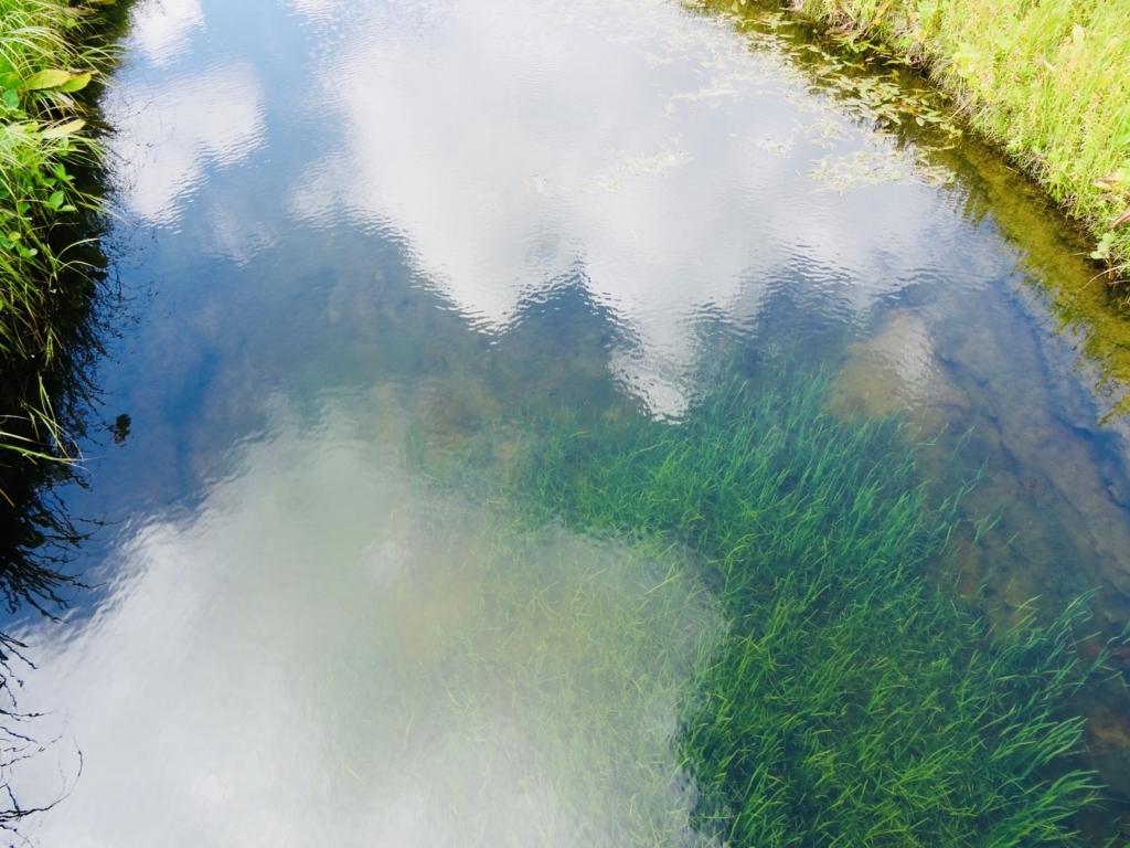 f:id:Wetland:20180822221748j:plain