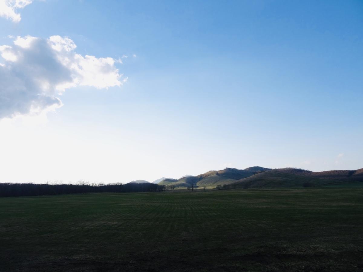 f:id:Wetland:20190509013002j:plain