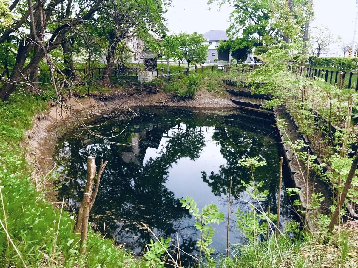 f:id:Wetland:20190529224422j:plain