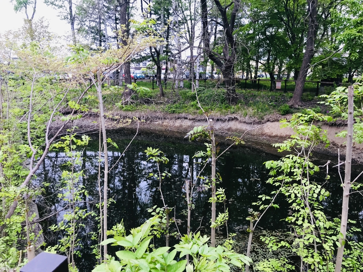 f:id:Wetland:20190529235112j:plain