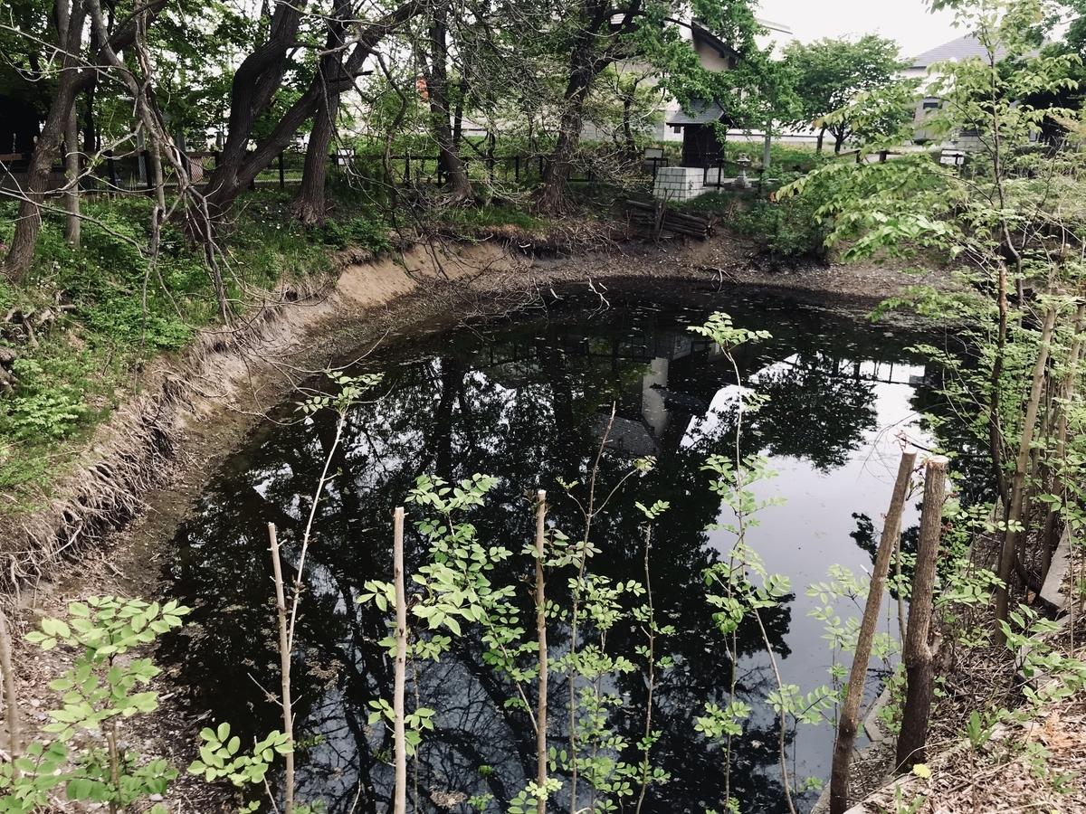 f:id:Wetland:20190529235114j:plain