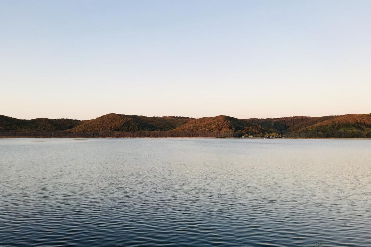 f:id:Wetland:20191020234443j:plain