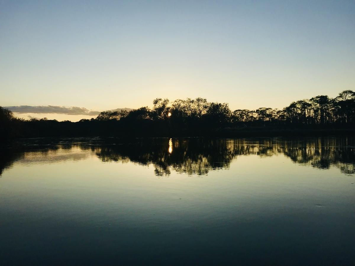 f:id:Wetland:20191021000228j:plain