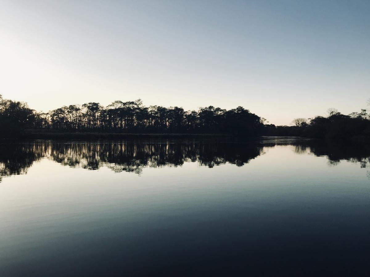 f:id:Wetland:20191021000300j:plain