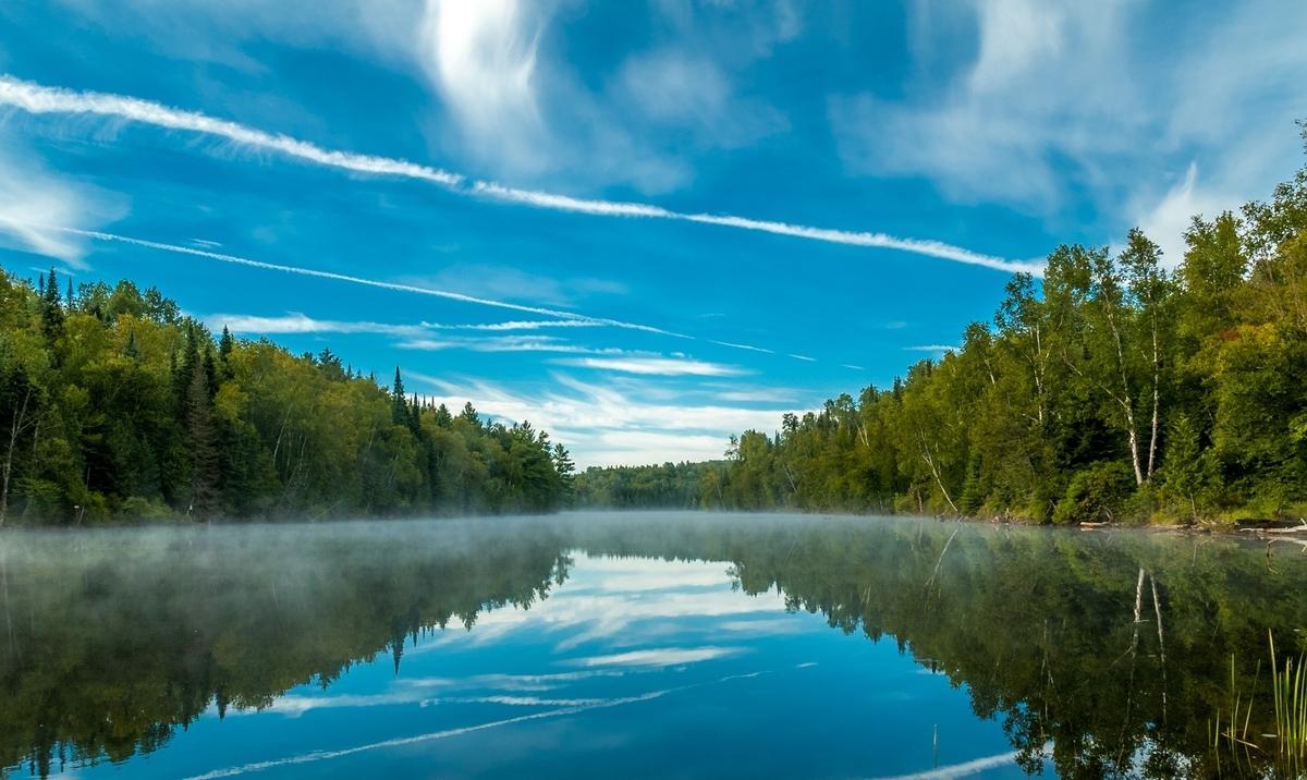 f:id:Wetland:20191025001253j:plain