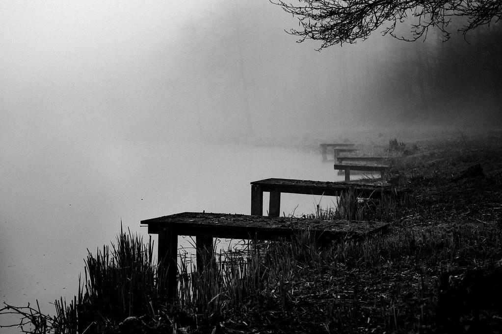 f:id:Wetland:20200401233631j:plain