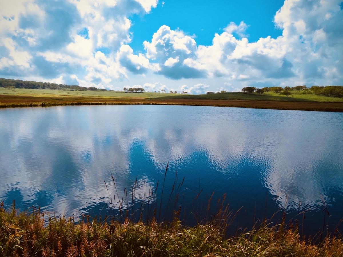 f:id:Wetland:20200416010617j:plain