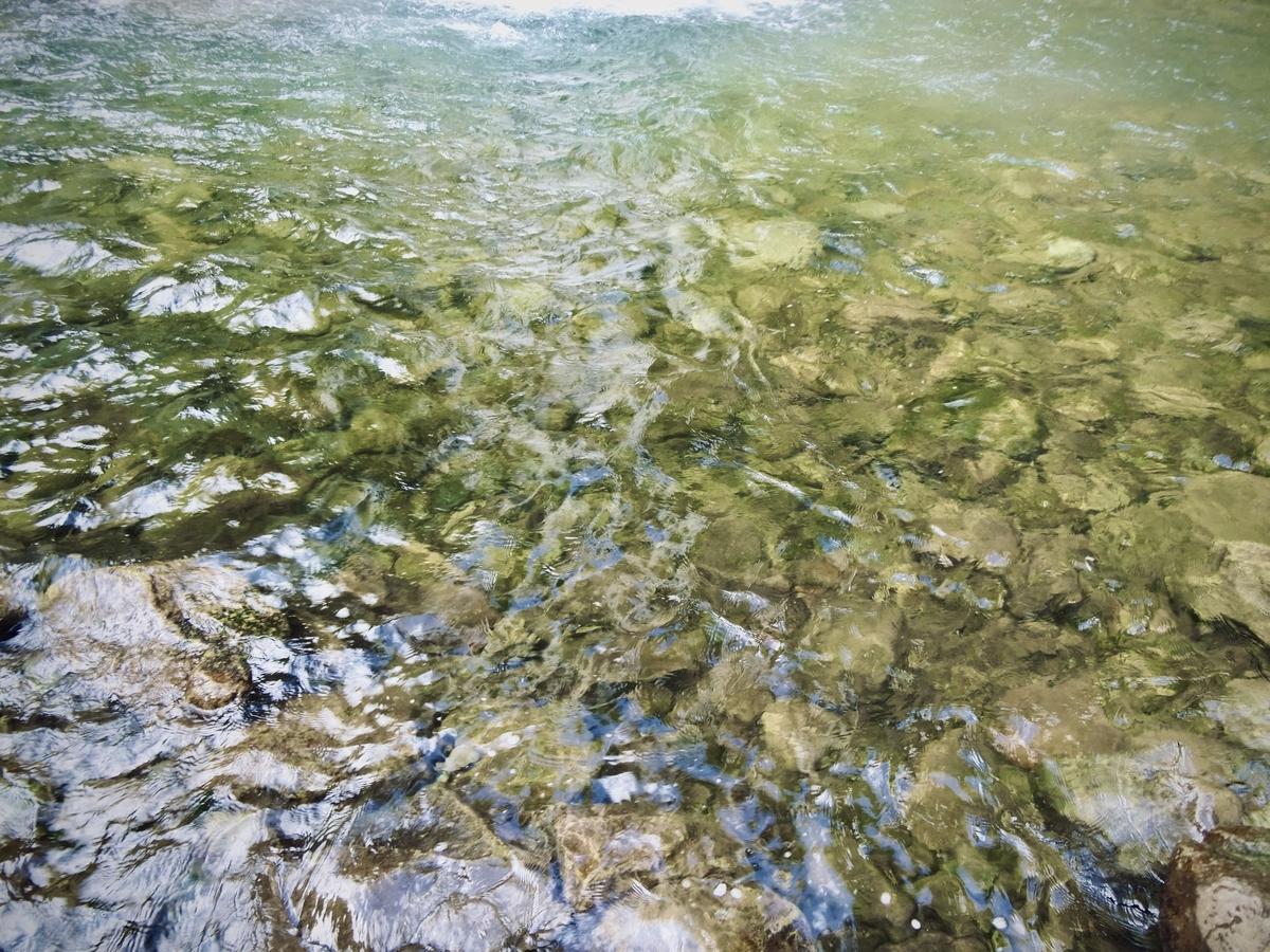 f:id:Wetland:20200416014654j:plain
