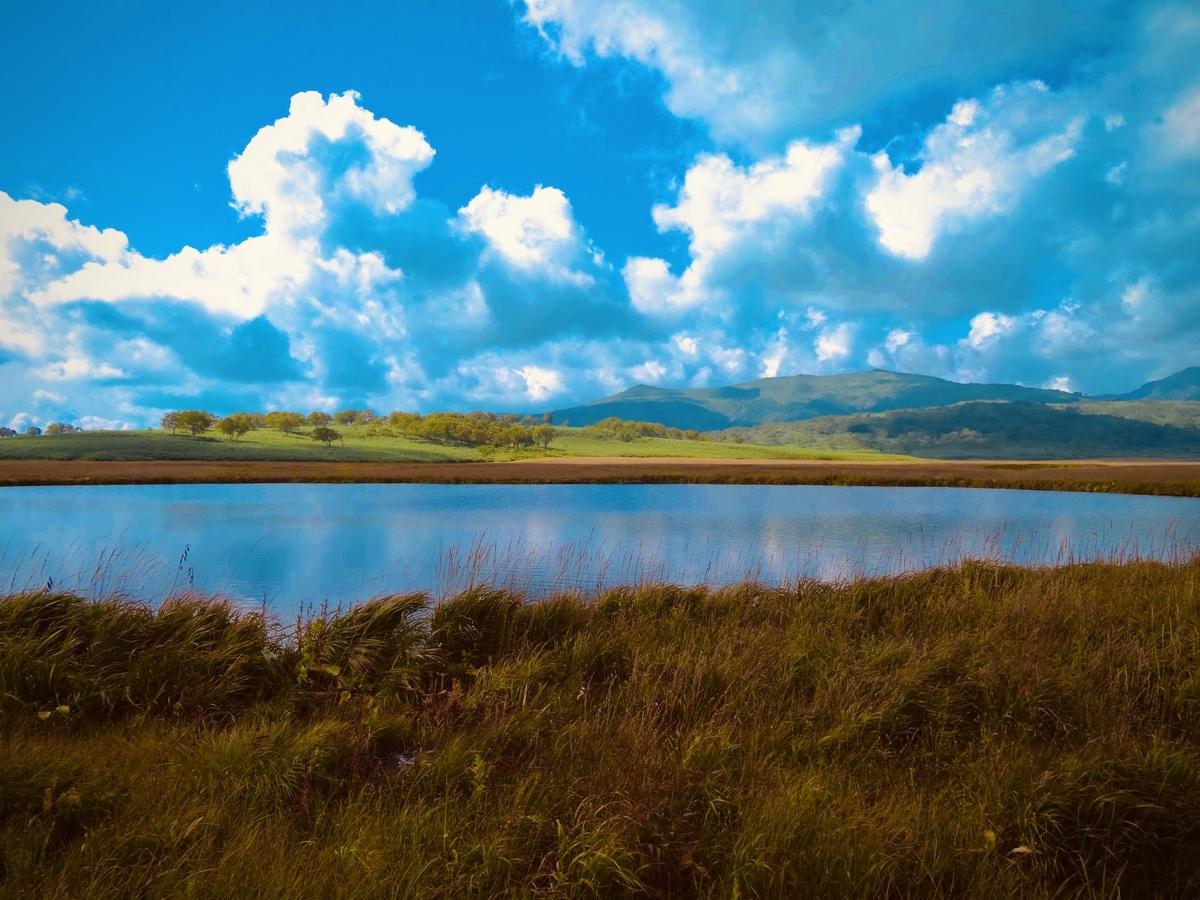 f:id:Wetland:20200416020237j:plain