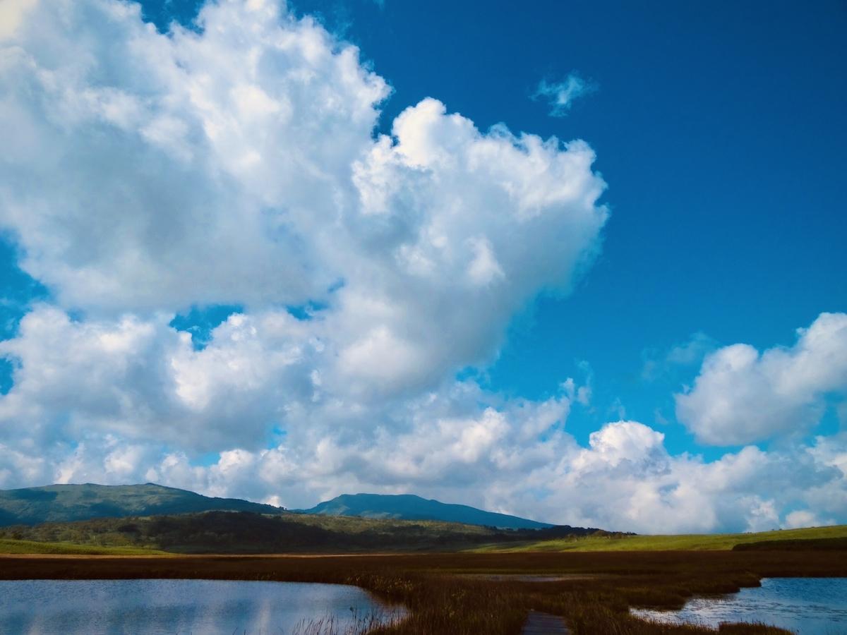 f:id:Wetland:20200416020255j:plain