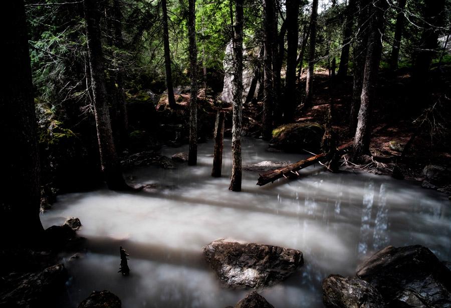 f:id:Wetland:20200601230656j:plain