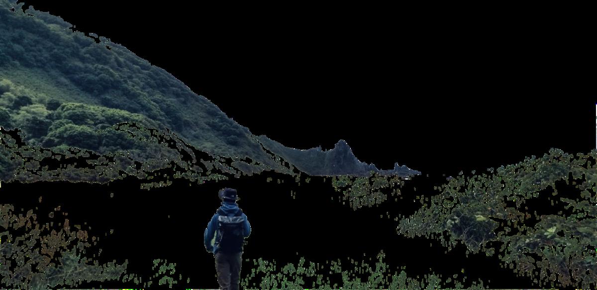 f:id:Wetland:20200809190827p:plain