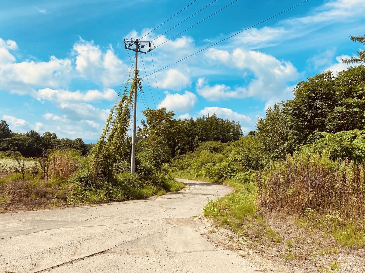 f:id:Wetland:20200831224526j:plain
