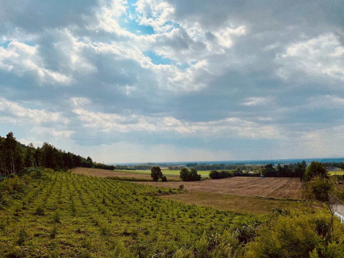 f:id:Wetland:20200831224606j:plain
