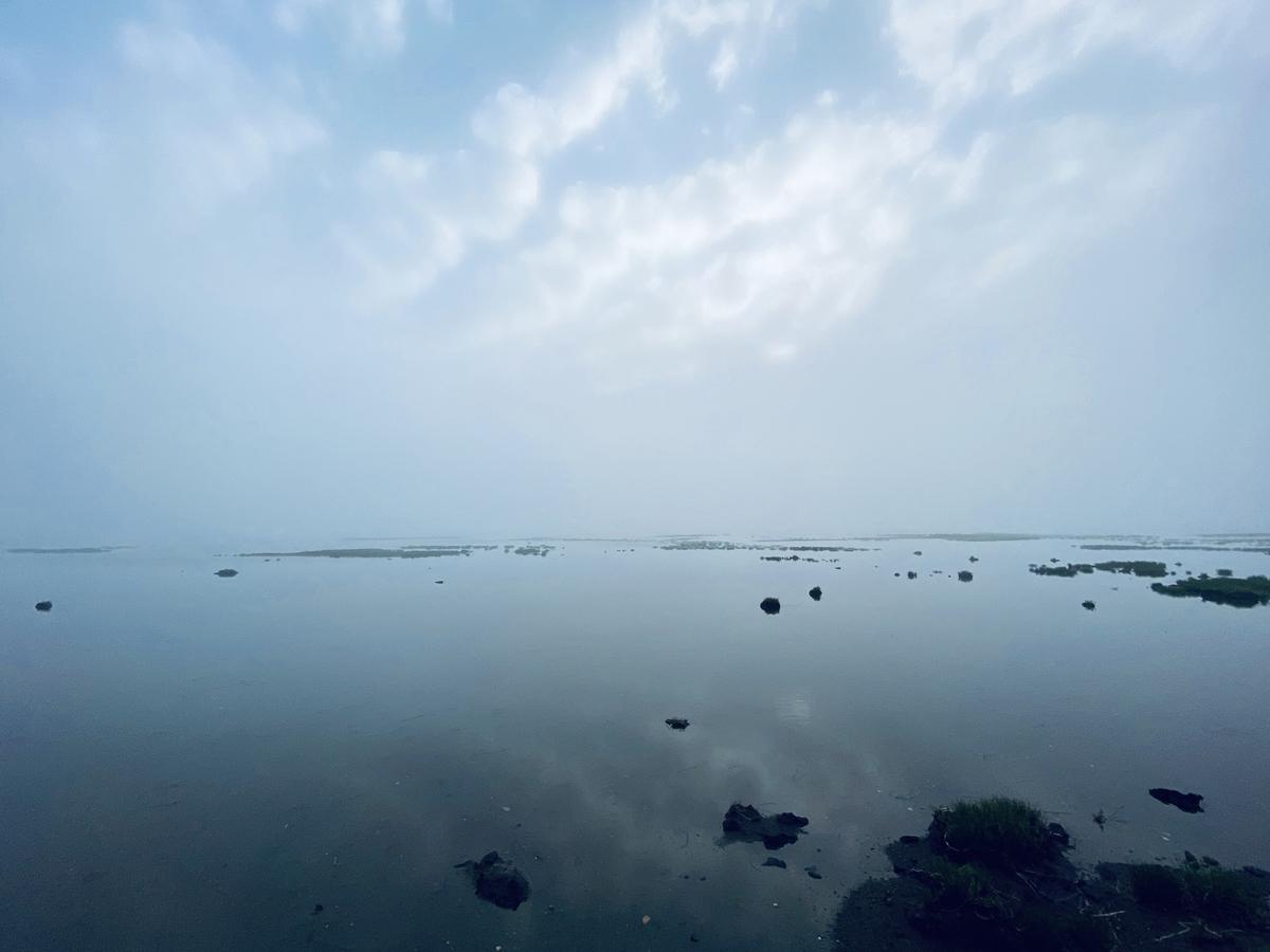 f:id:Wetland:20201108224801j:plain