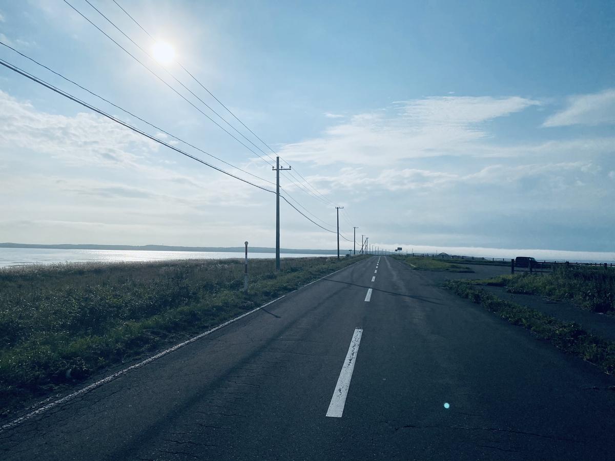 f:id:Wetland:20201108234610j:plain