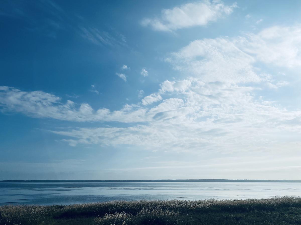 f:id:Wetland:20201108234631j:plain