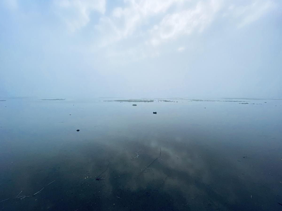 f:id:Wetland:20201109000126j:plain