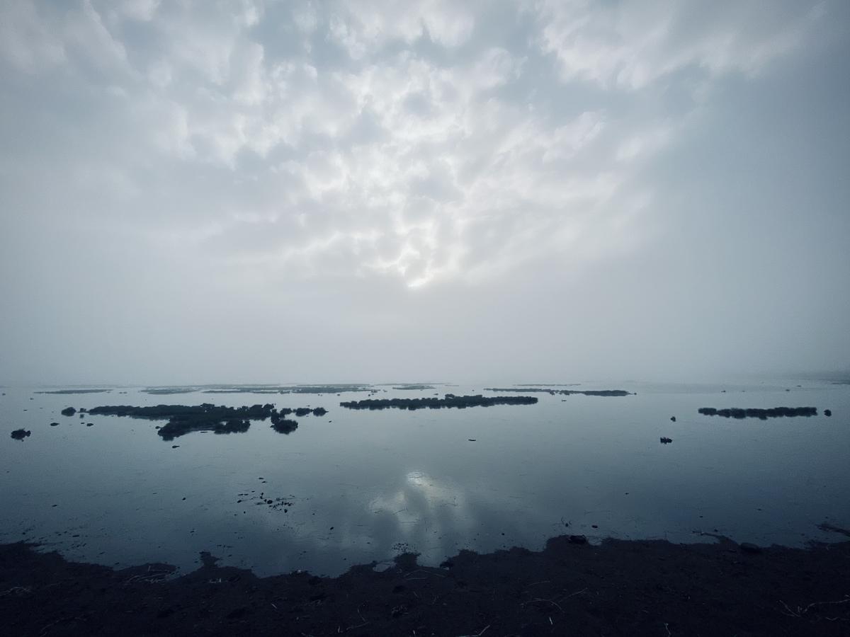 f:id:Wetland:20201109000139j:plain
