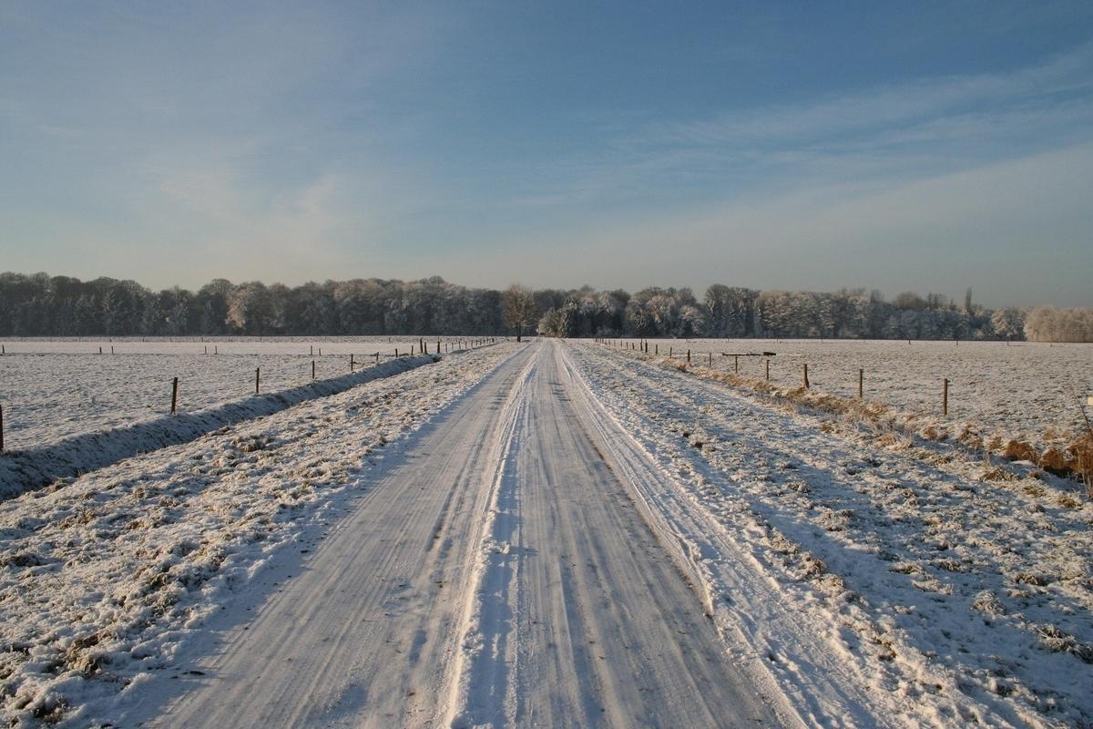 f:id:Wetland:20210301230245j:plain
