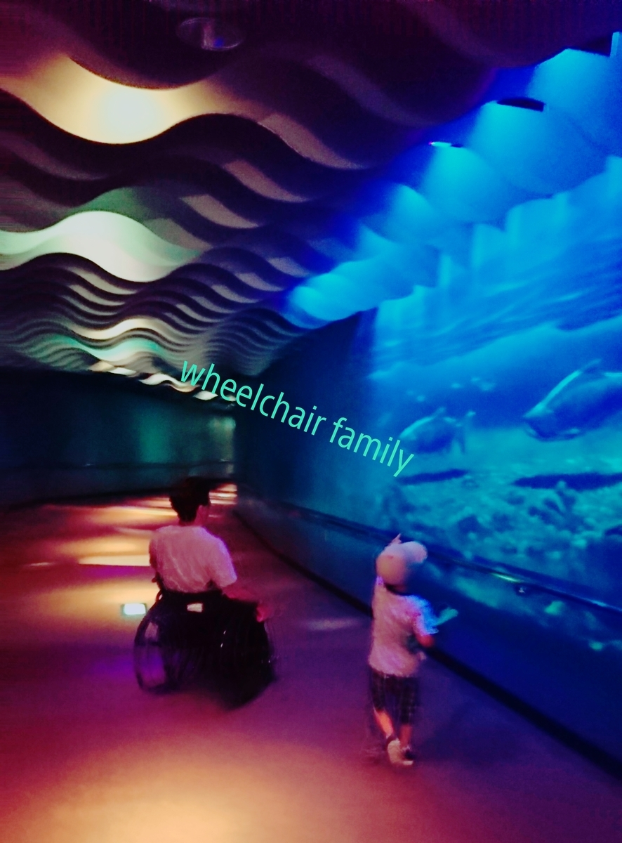 f:id:WheelchairFamily:20190706161157j:plain